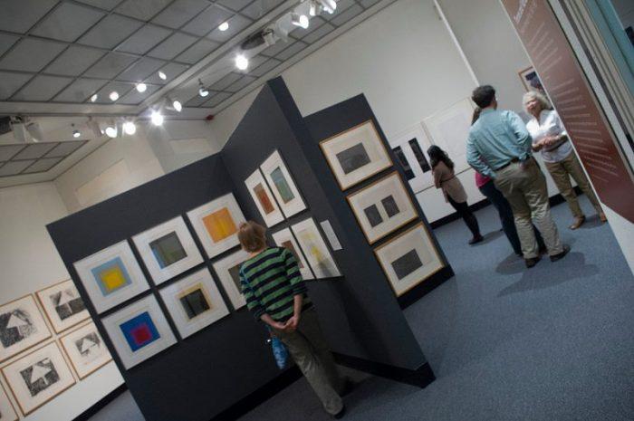 4. Art Viewing: Davison Art Center