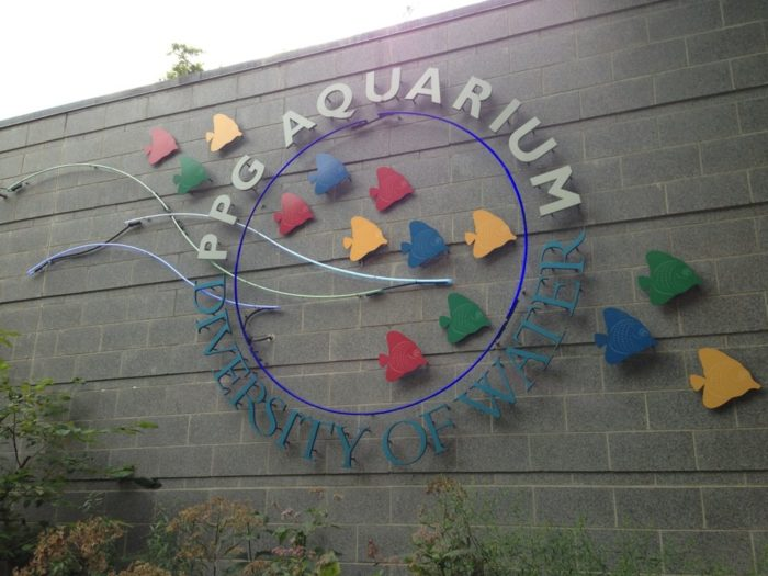 Cool down with a stop at the PPG Aquarium...