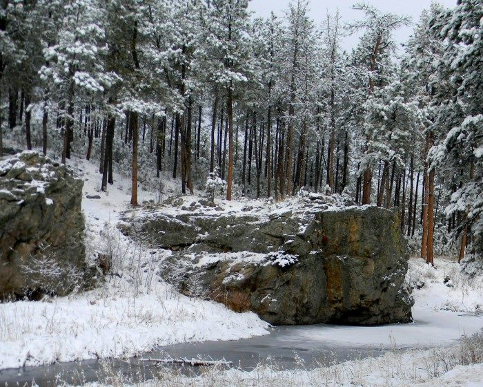 12. South Dakota: Custer State Park