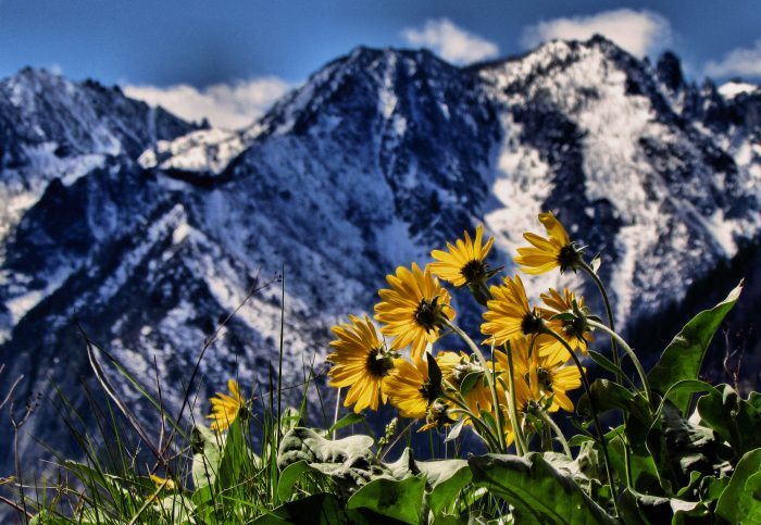 2. The Cascades can be seen here as a dramatic backdrop near Leavenworth.
