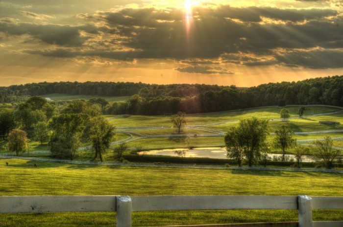 13. A strikingly beautiful horse farm in Baltimore County.