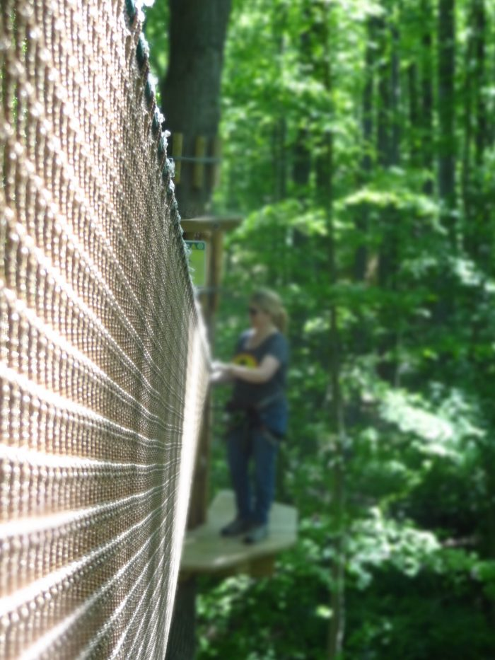 A rope bridge takes you (unsteadily) between trees in the first half of the course
