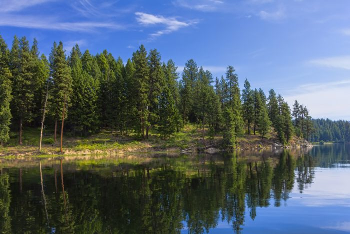 12. North Twin Lake on a bright morning, on the Colville Indian Reservation near Inchelium.
