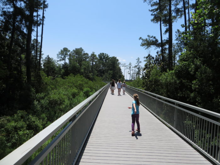 4. Boardwalk to Historic Jamestown