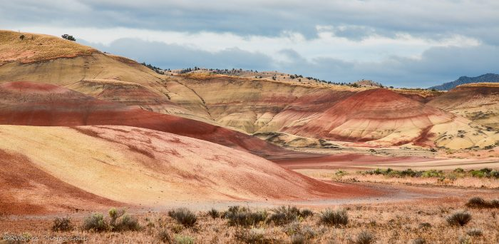 4. John Day Fossil Beds National Monument