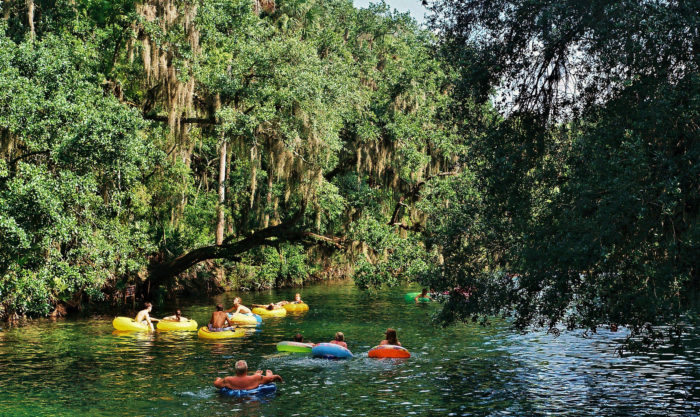 Don't forget to check out our state parks and tube down a river.