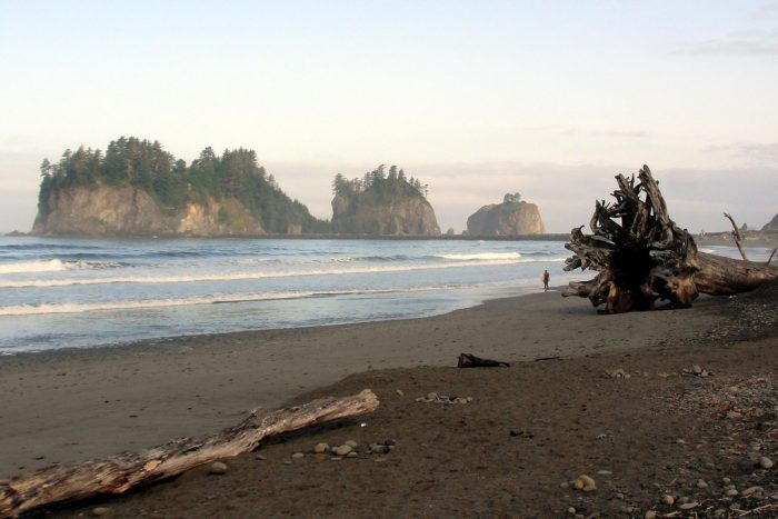 2. Washington has some of the most dreamy beaches.