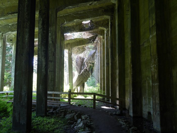 4. Iron Goat Trail
