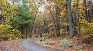 10 Incredible Hikes Under 5 Miles Everyone In Rhode Island Should Take
