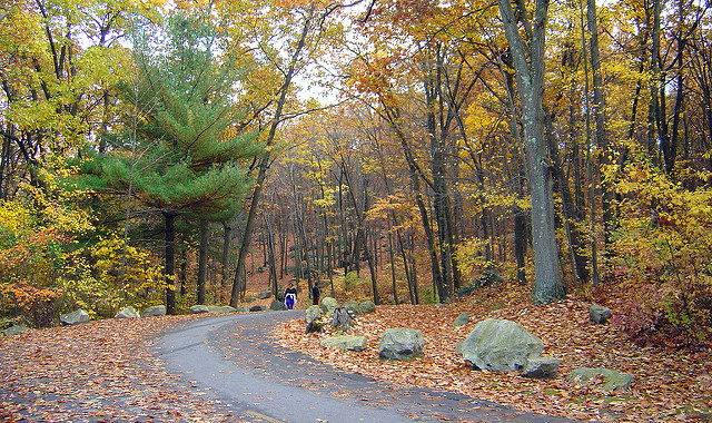 7. Lincoln Woods Trail, Lincoln