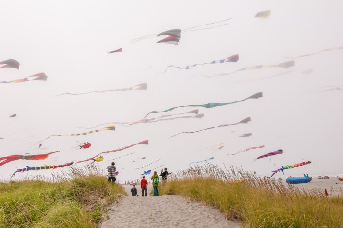 1 The International Kite Festival