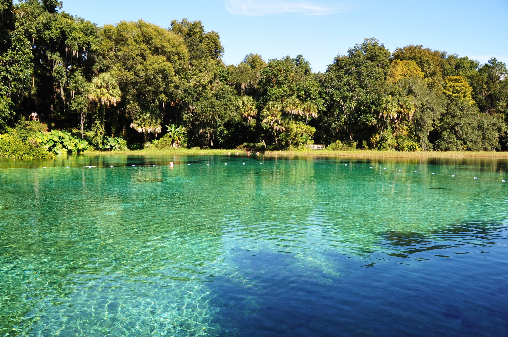 Man Cave Store Spring Lake Park Mn : The best springs in florida to visit right now