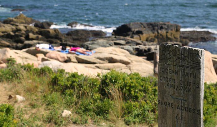 2. Ocean Path, Acadia National Park