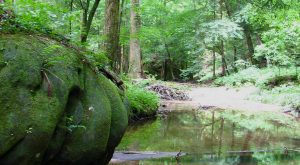This One Easy Hike In Alabama Will Lead You To Someplace Unforgettable