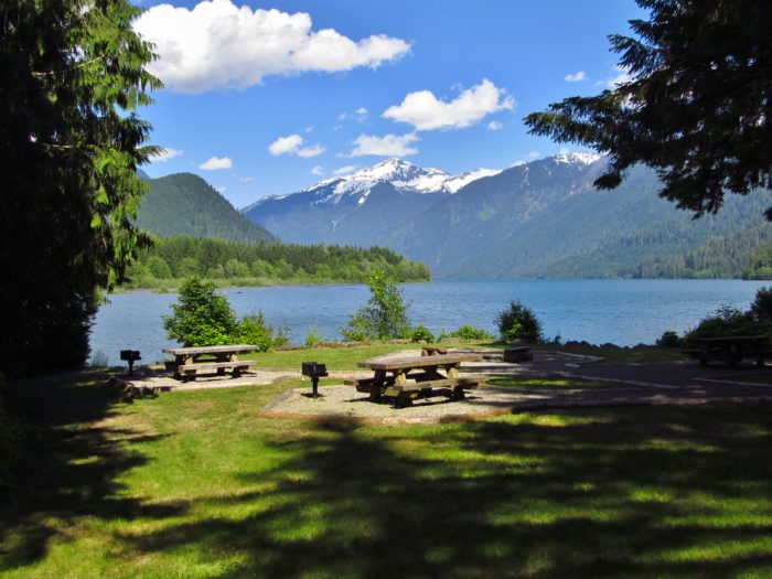 4. Picnics are just perfect this time of year - especially near Baker Lake.
