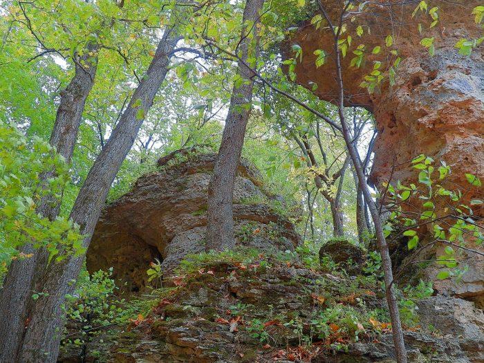 9. Backbone State Park trails