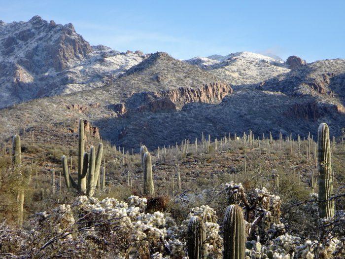 13. Witness the rare treat of seeing snow coat the desert.