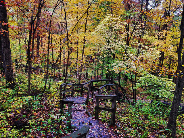 2. Brown County State Park