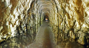 Most People Have No Idea This Unique Tunnel In South Carolina Exists