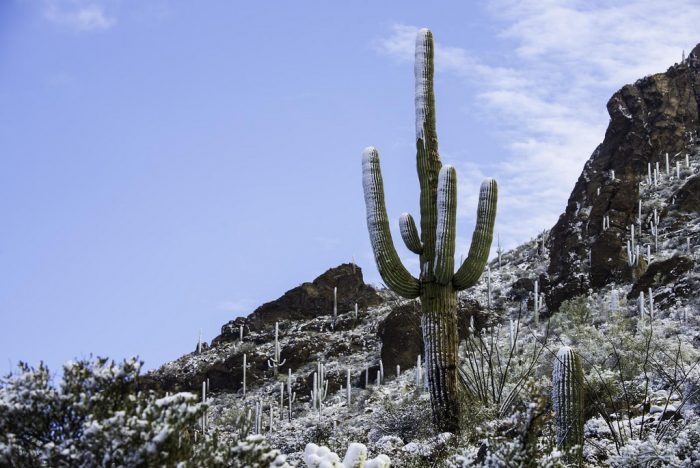 7. You are more likely to witness that rare treat of snow in the desert here.