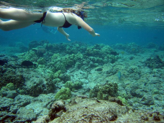 16. Best Snorkeling: Kahaluu Beach Park
