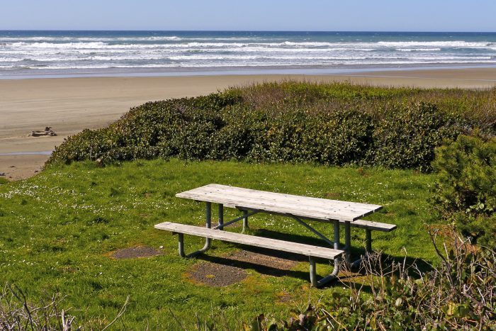 13. Have a picnic at the beach.