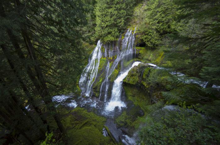 7. Panther Creek Falls