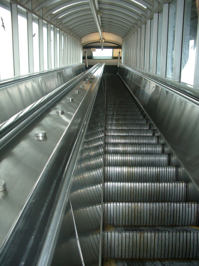 Park in the free parking lot then hop on the escalator leading to the zoo. (Elevators are also available.)