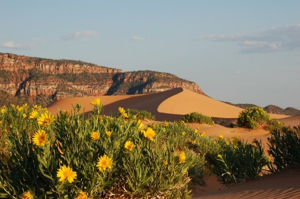 3. Coral Pink Sand Dunes State Park