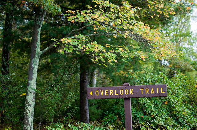 1. Leonard Harrison State Park's overlook promises a spectacular view of Pine Gorge, the Grand Canyon of Pennsylvania, in Wellsboro.