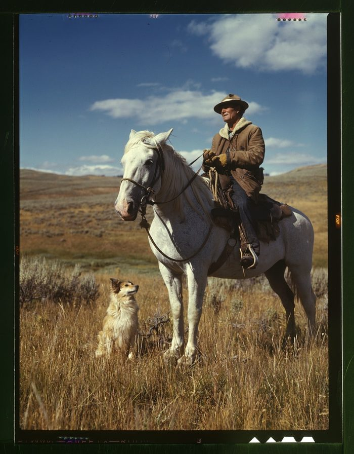 9. Shepherd with his horse and dog on Gravelly Range, Madison County, Montana.