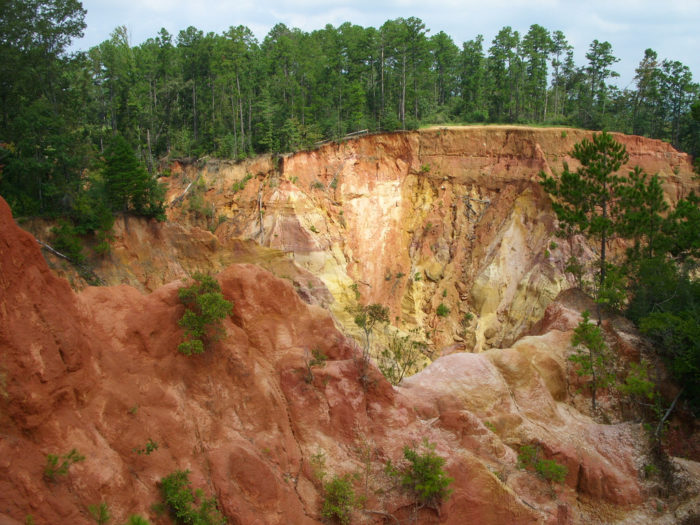 Standing at approximately 400 feet above sea level, Red Bluff consists of exposed red clay, soil, sand, and other sediments.