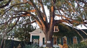 One Of The Oldest Homes In The Country Is Right Here In Mississippi And You'll Definitely Want To Visit