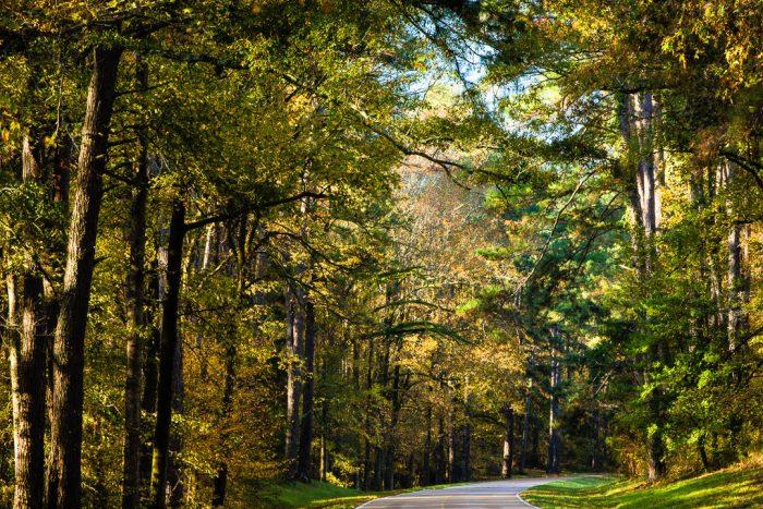 2. Natchez Trace Parkway, Natchez to Nashville, Tennessee