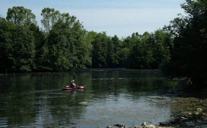 2. Finger Lakes – Columbia, Mo.