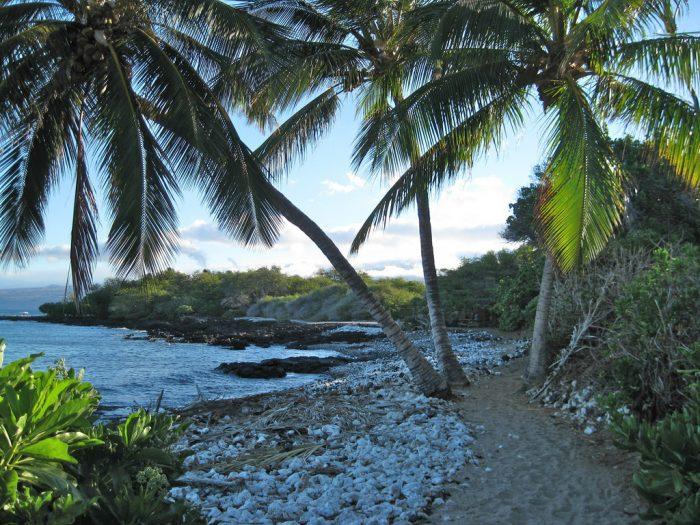 2. Ala Kahakai Trail
