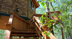 These 4 Treehouses In Montana Will Give You An Unforgettable Experience