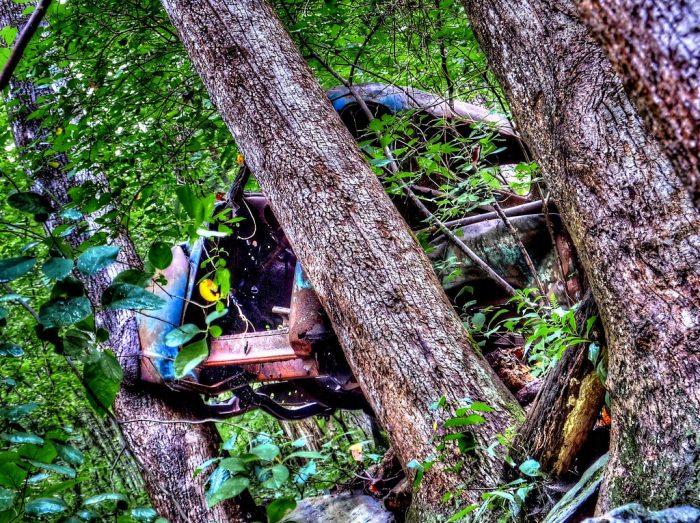 5. Moonshine Truck—Amicalola Falls State Park