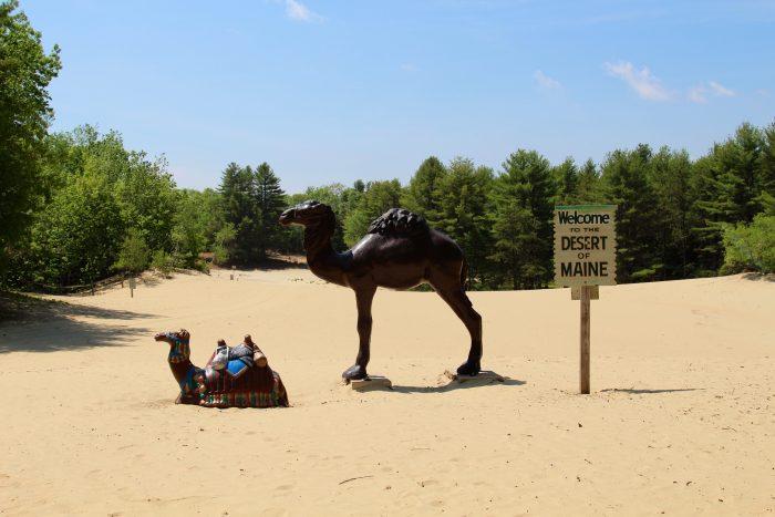 4. The Desert of Maine, Freeport