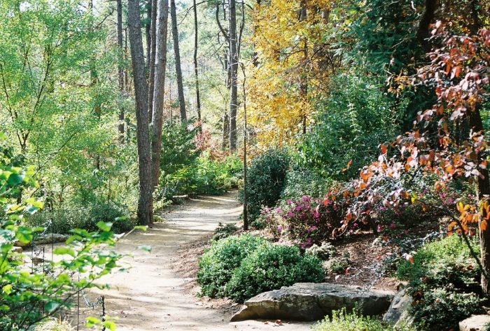 Look at how inviting the trail is!