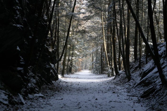The view of the path from the tunnel's entrance is like something out of a fairy tale.