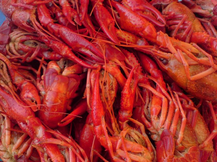 12. And then they created another law to keep people from stealing crawfish.