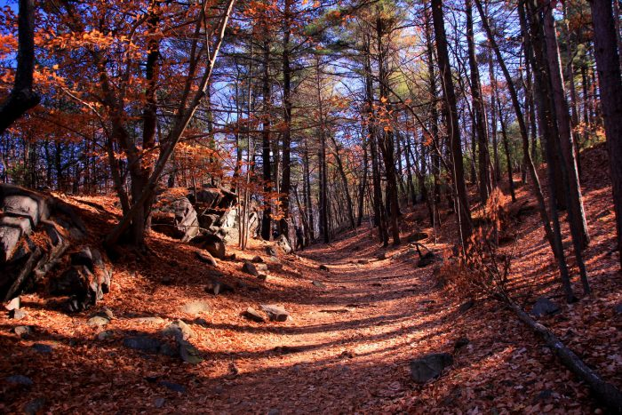 5. The Slide Notch Path at Blue Hills Reservation offers a glimpse of a waterfall and plenty of woodland tranquility. This trail is moderately difficult.