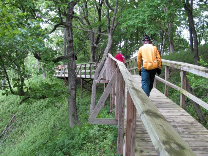 10. Eagle Bluffs State Park – Columbia