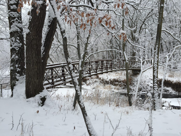 3. A frosty bridge in Turtle River State Park near Grand Forks