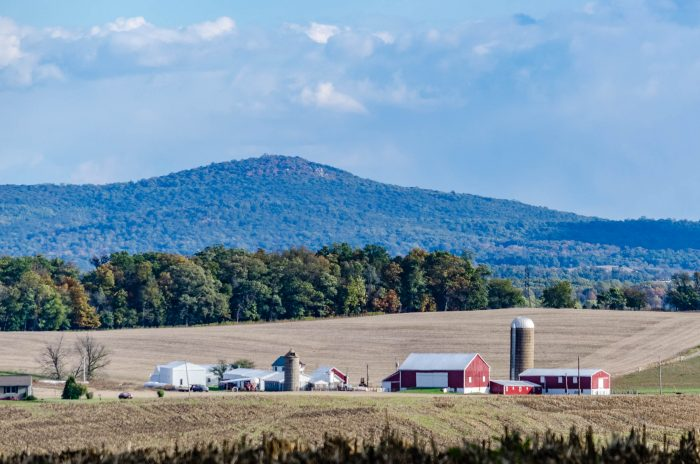 12. This farm is nestled in a picture-perfect spot with Sugarloaf Mountain in the distance.