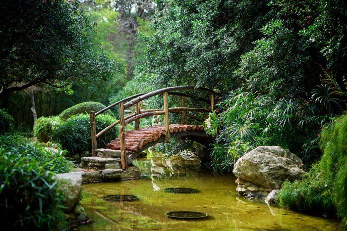 1 Texas Zilker Botanical Garden
