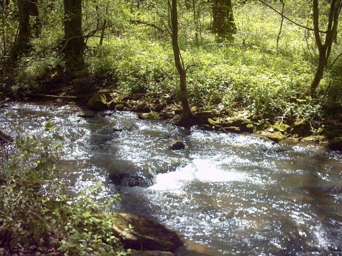 spring mill creek