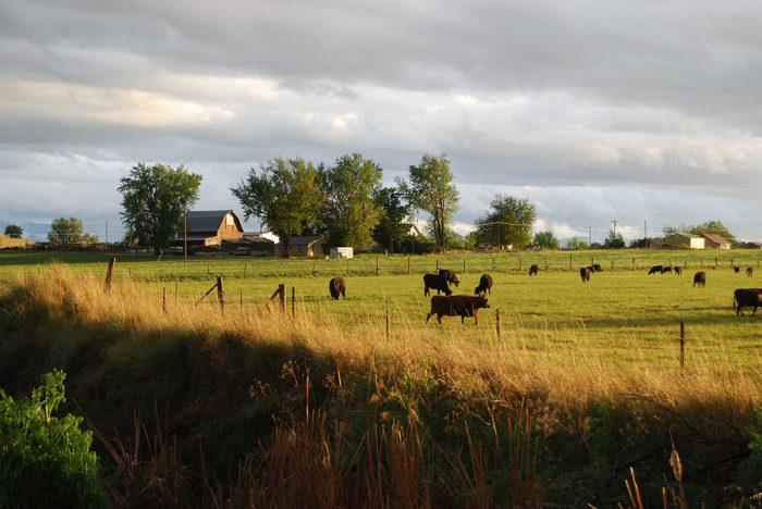 15 beautifully scenic rural farms in idaho