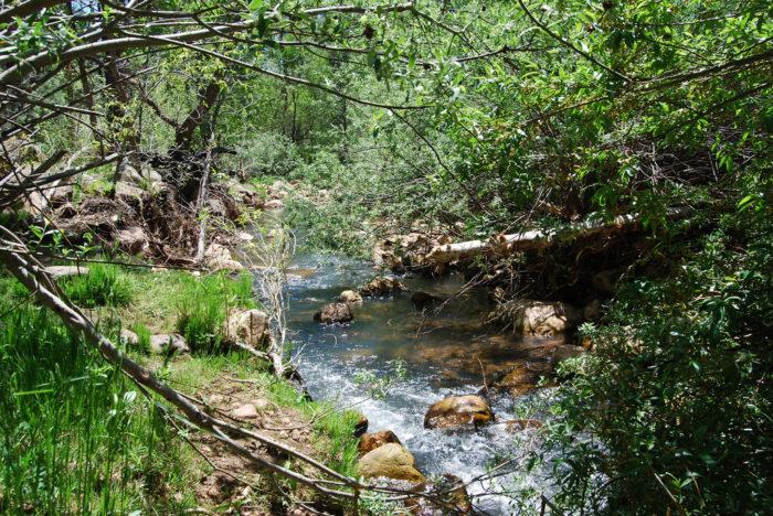 2. Canyon Creek